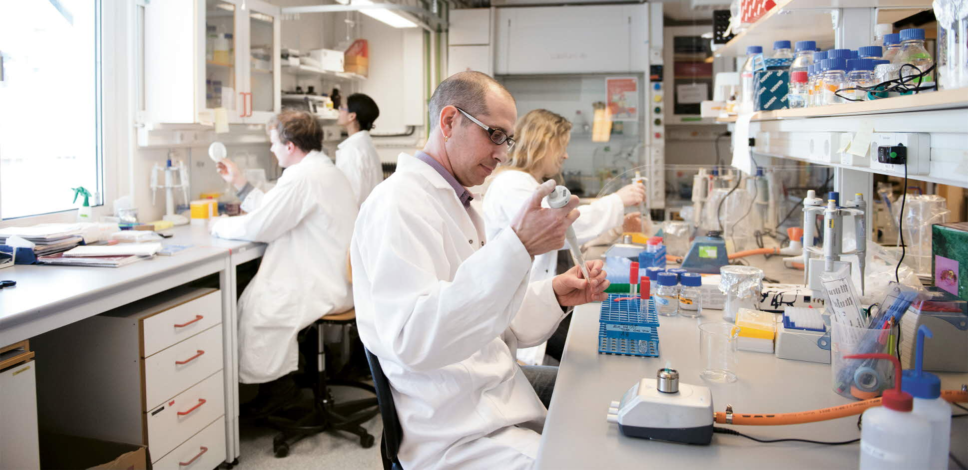 Jarone Pinhassi in the lab with his colleagues