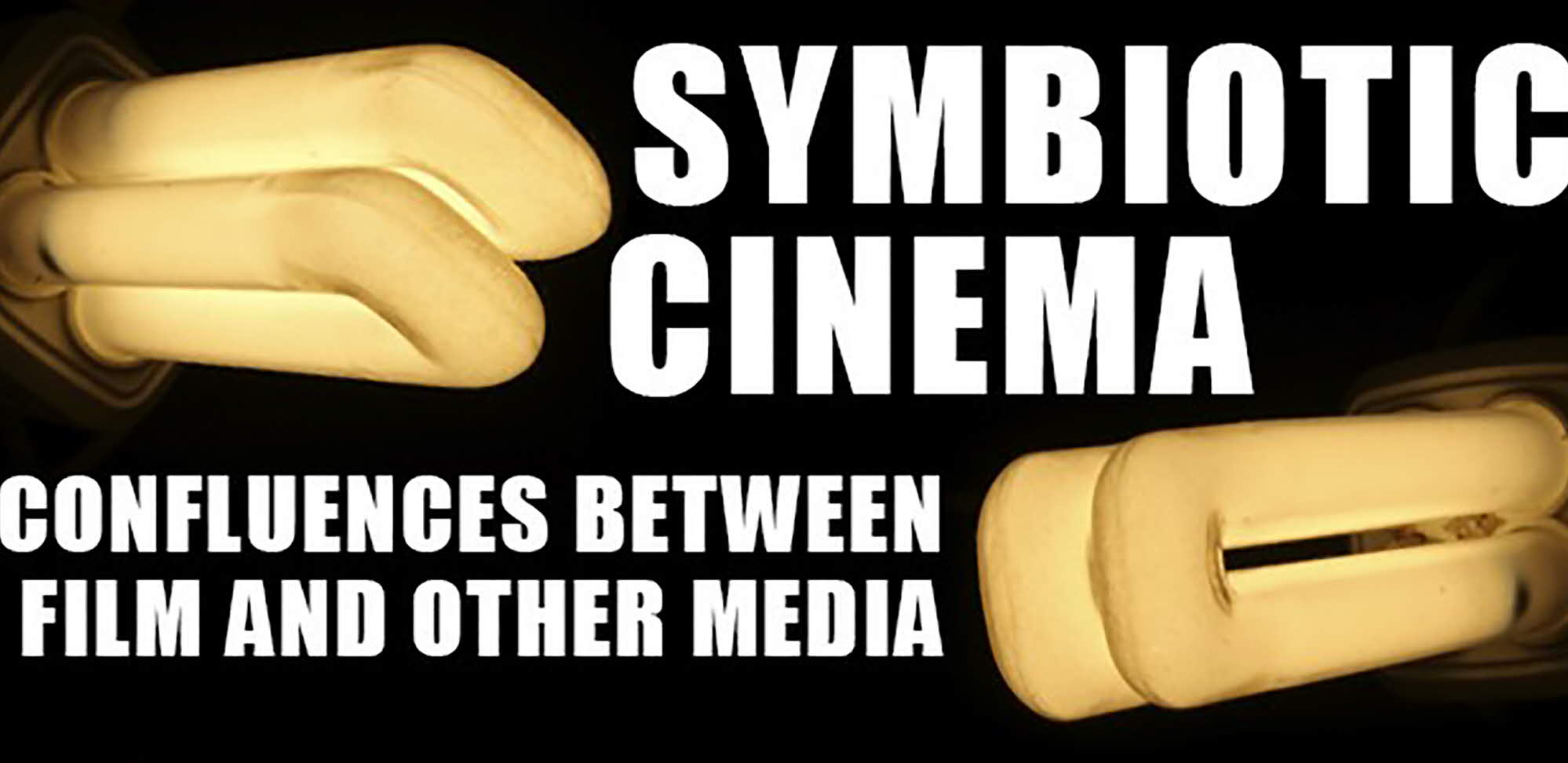 Symbiotic Cinema: Confluences between Film and Other Media