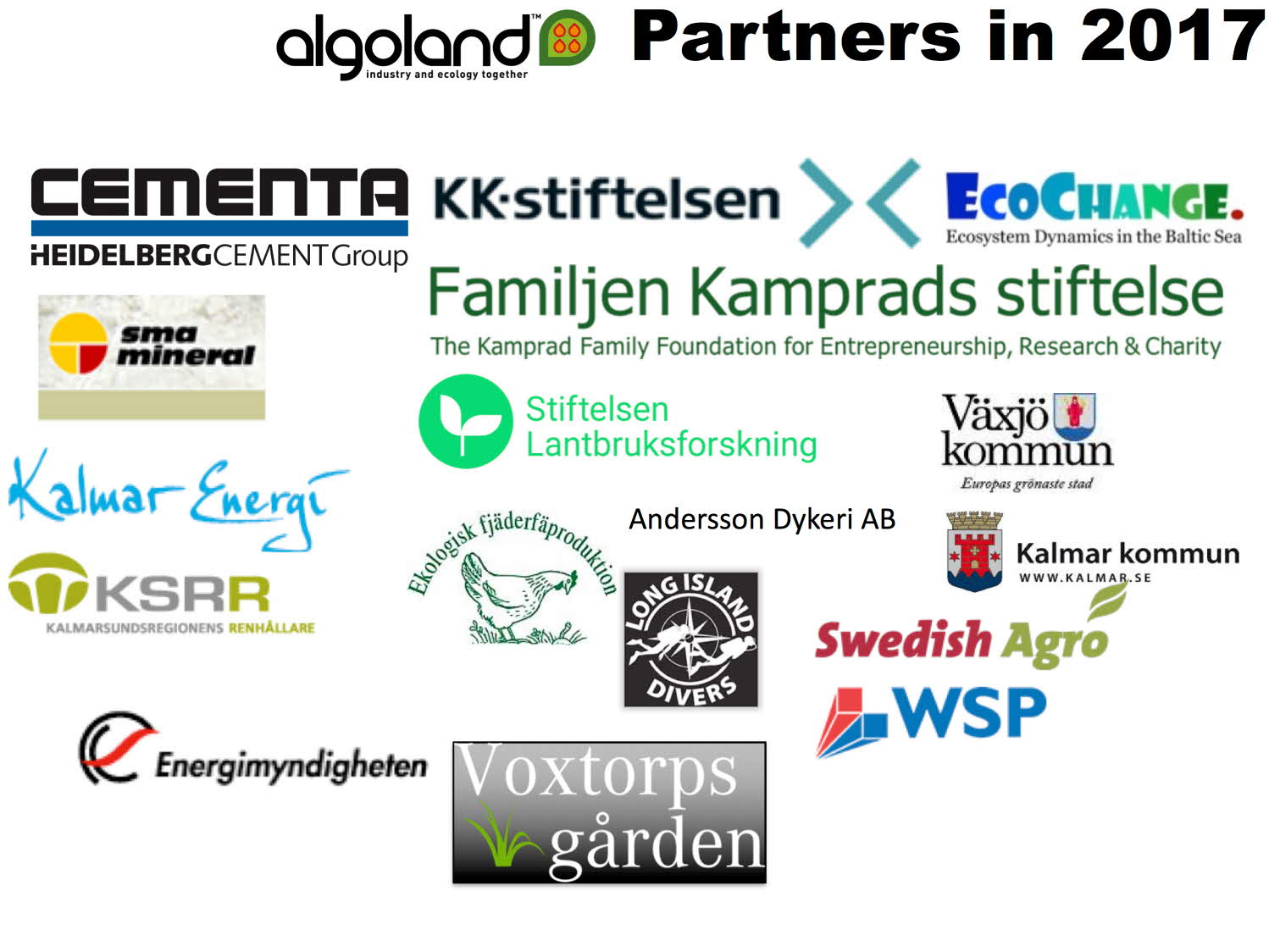 Algoland Team and Partners