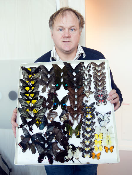 Markus Franzén demonstrating various butterflies.
