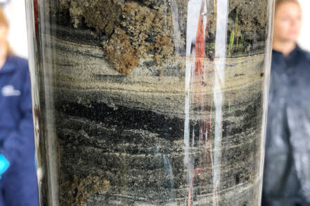 Plastic tubes with sediment inside (layers of mud from the bottom of the sea). We collect this mud to do chemical analyses and measure metal and methane gas contents.
