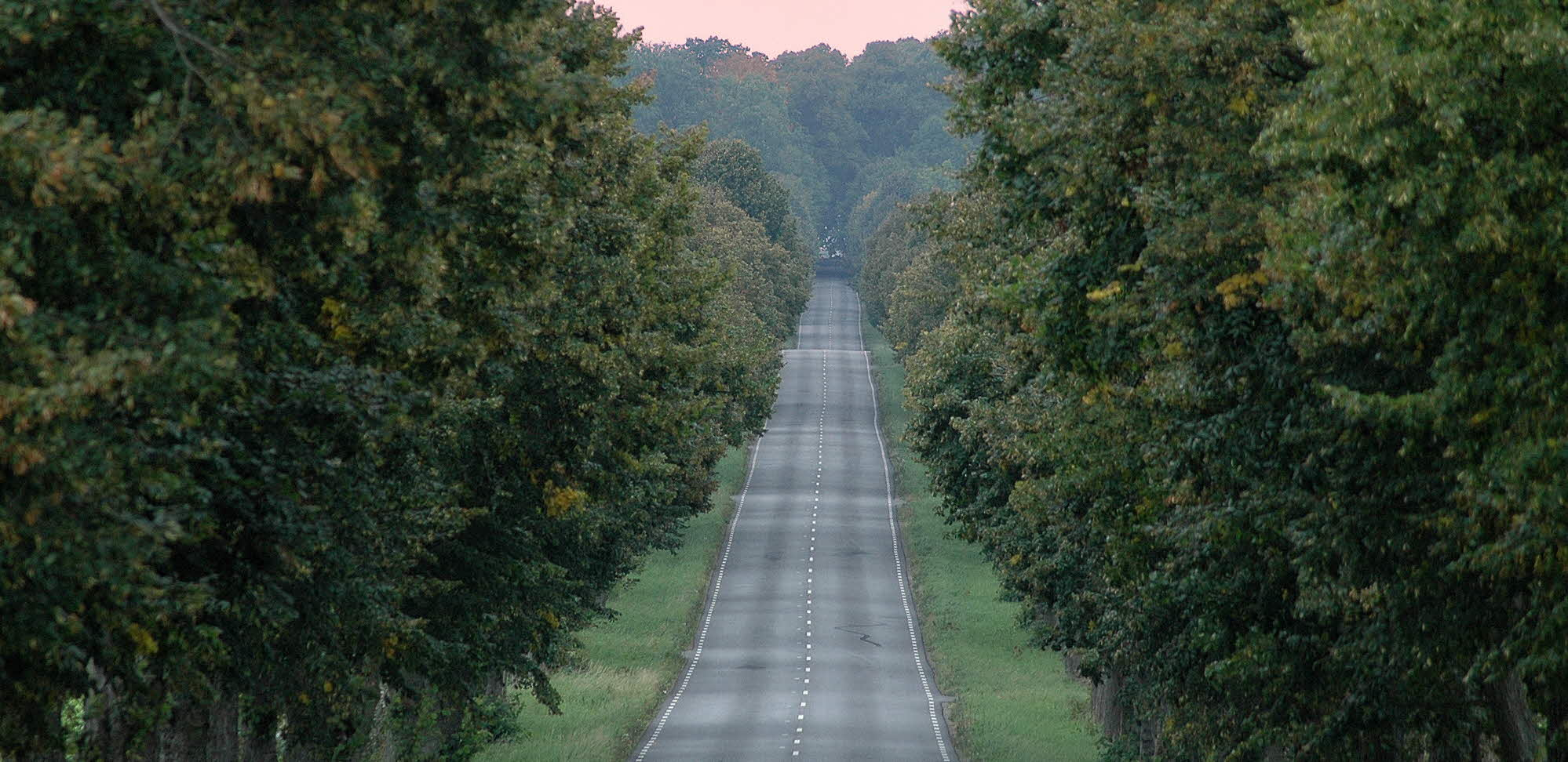 road disappearing into the distance