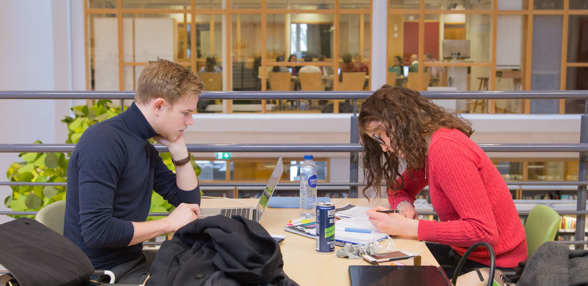Students study at the library